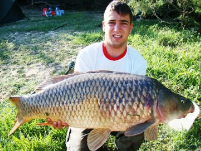 Carp, River Ebro, Caspe, Spain